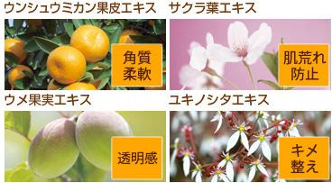 4つの国産植物エキス(美肌成分)配合!!