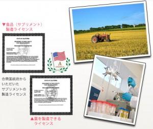 食品製造ライセンス、薬を製造できるライセンス