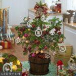 【日比谷花壇】 冬 期間限定 フラワーギフト 2015年 クリスマス 特集
