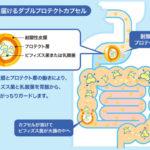 【森下仁丹】大腸まで届くビフィズス菌~初回限定特別価格~