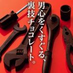 【神戸フランツ】 少し早いですが バレンタイン 情報 男心を掴む 個性派チョコレート 【カーマニアセットV6】