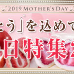 【神戸フランツ】 2019年 母の日 スイーツ セレクト 期間限定 ローズの宝石箱 他 新作スイーツ 続出